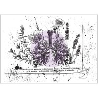 Prima - Cling Stamps - Treasured Memories 7