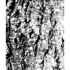 Prima - 2.5x3'' Clear Stamp - Tree