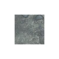 Lindy's Stamp Gang - Starburst - Black Orchid Silver