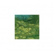 Lindy's Stamp Gang - Starburst - Ponderosa Pines Olive