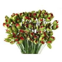 Prima - Paper Flowers - Little Roses - 100 pcs