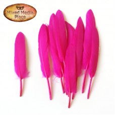 MMP - Feathers - 10pcs - Fuchsia